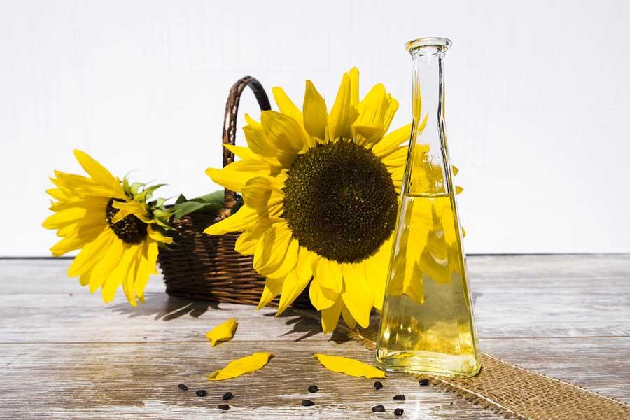 Peaux sèches : les bienfaits de l'huile de tournesol pour la peau