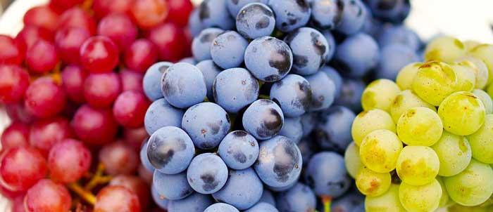 raisin Les aliments à consommer pour avoir une belle peau