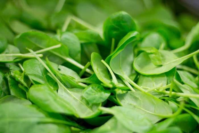 L'épinard, super-légume